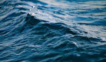 #6 Pollution des océans (partie 1)